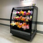 FREOR-display-cabinet-PLUTON-SPACE-FLOWER-6